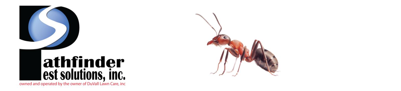 Pathfinder Pest Solutions, Inc.